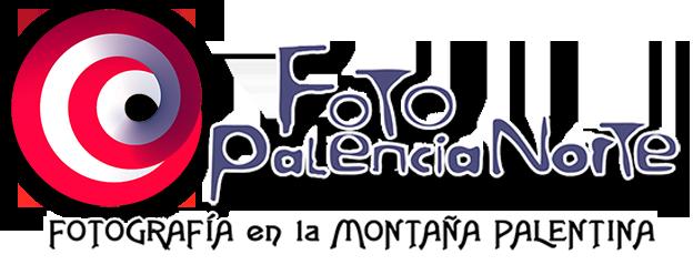 Asociación FPN